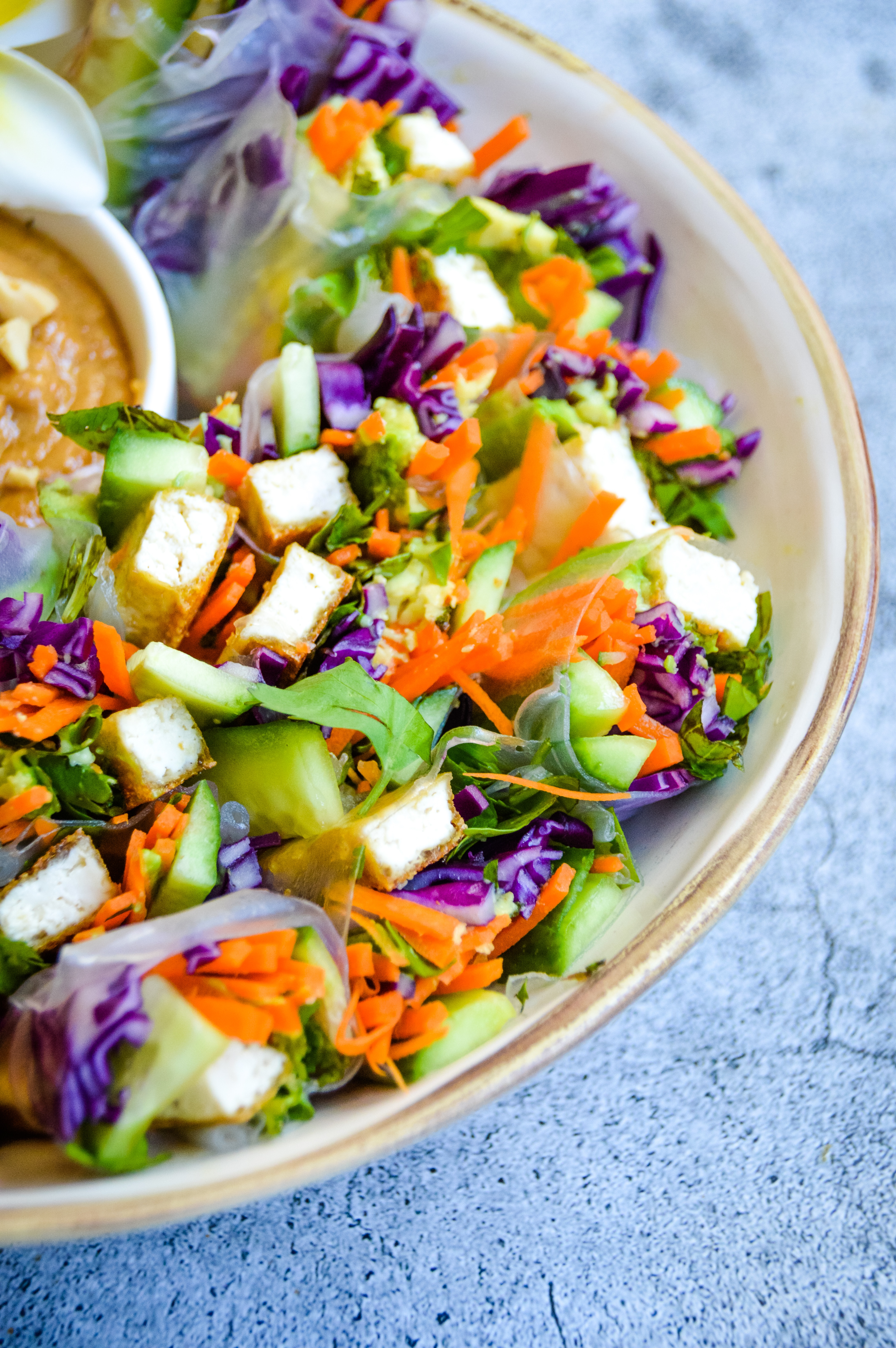 veggies spring rolls